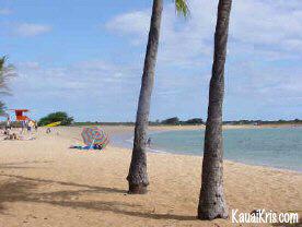 saltpond beach